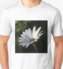 African Daisy Unisex T-Shirt