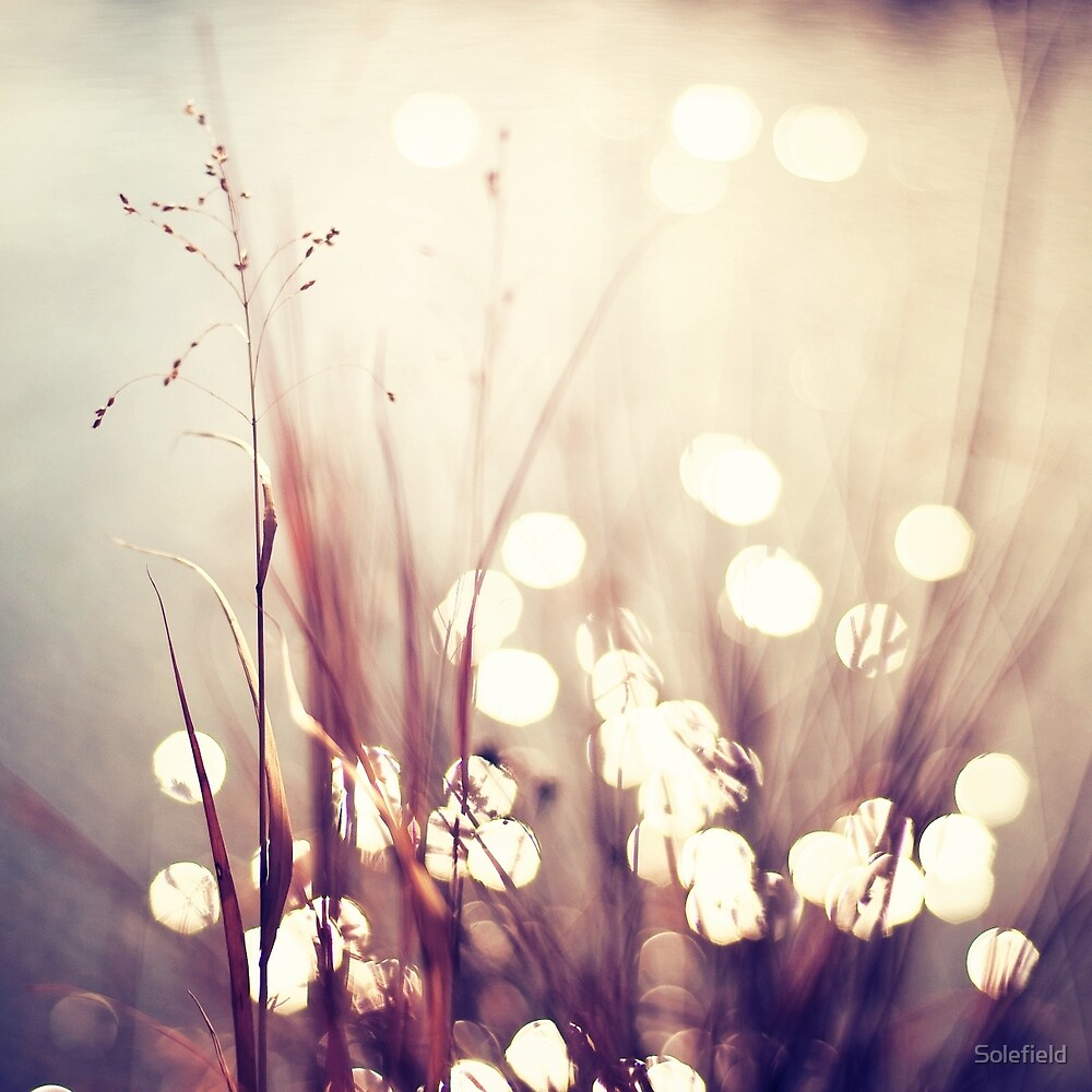Glimmerings by Solefield