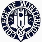 College of Winterhold by Clara Sjoquist