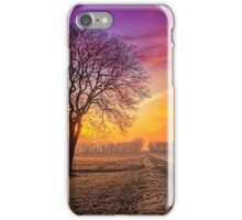 Colour Visions of Fall iPhone Case/Skin