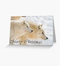 Arctic Wolf Christmas Card - English - 13 Greeting Card