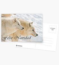Arctic Wolf Christmas Card - Spanish - 13 Postcards