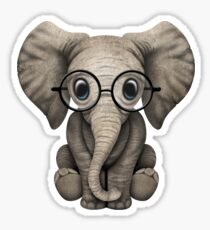 Cute Baby Elephant Calf with Reading Glasses on Blue Sticker