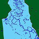 Flood Plain by David Fraser