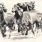 Mustangs of Las Colinas by dbclemons