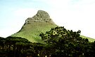 Lion's Head from Table Mountain, Cape Town by Carole-Anne