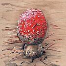 Macro Mushroom by Daks