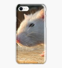 Basil with Back Lighting  iPhone Case/Skin