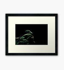Gree Lizard Framed Print