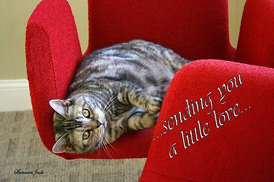 Kitty Cat Sending Love by SummerJade