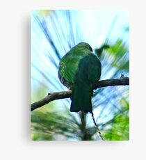 GOING GREEN, KEEPING COLOUR! Canvas Print