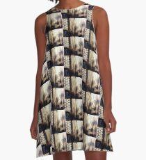 Unlocking the Spirit within A-Line Dress