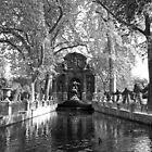La Fontaine de Medicis von Alex Cassels