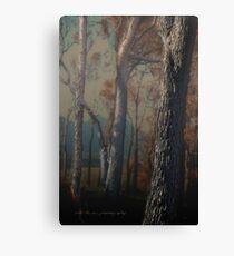 Hidden Forest © Vicki Ferrari Canvas Print