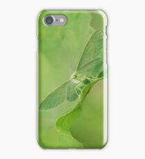 Green moth iPhone Case/Skin