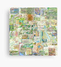 69 Maps Metal Print