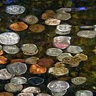 SURREAL MONEY AND COINS UNDER WATER ABSTRACT  by Nicola Furlong