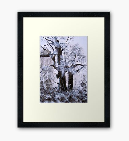 Sherwood Forest Framed Print