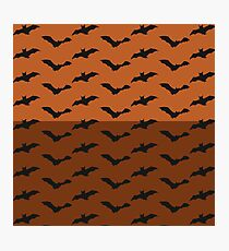 To Bats and Beyond! Photographic Print