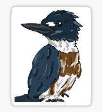 Belted Kingfisher Sticker