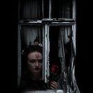 The abandoned window by Ian Coyle