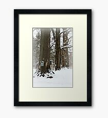 Maple Sugaring Time Framed Print