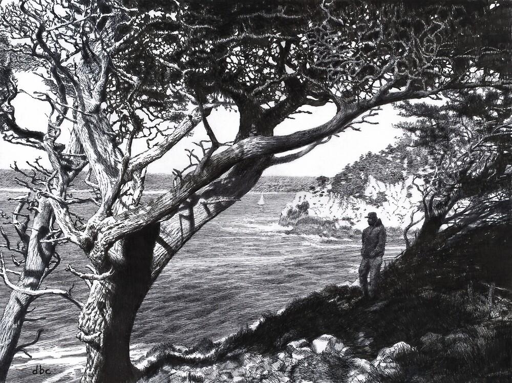 Point Lobos by dbclemons
