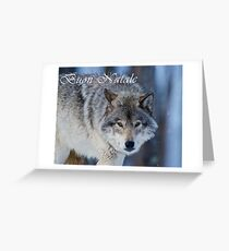 Timber Wolf Christmas Card - Italian - 18 Greeting Card