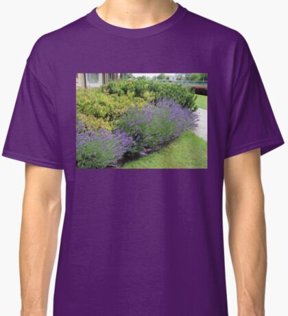 Lavender Welcome Classic T-Shirt
