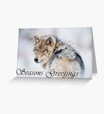 Timber Wolf Seasons Card - 19 Greeting Card