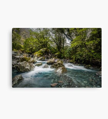 Headwaters of the Hollyford Canvas Print