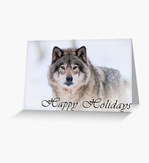 Timber Wolf Holiday Card - 21 Greeting Card