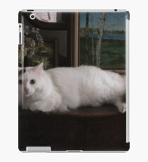 Kitty cat modelling iPad Case/Skin