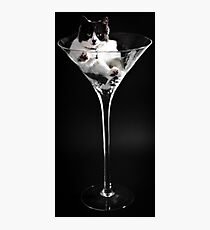 Puss In Booze Photographic Print