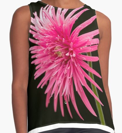 Life of  a Beauty Contrast Tank