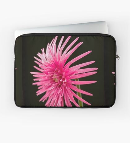 Life of  a Beauty Laptop Sleeve