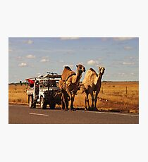 How many horse power is this Photographic Print