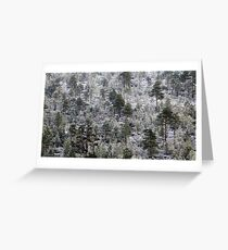 19.10.2016: Rime in the Forest Greeting Card