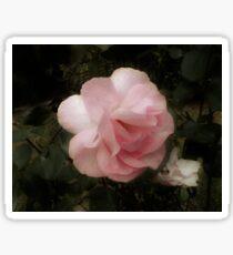 Definitely Pink Sticker
