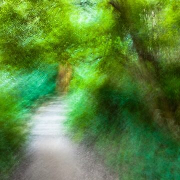 BLURRED-VISION-9044 by foles
