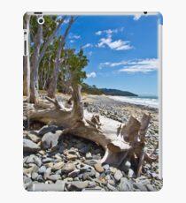 Drift Wood iPad Case/Skin