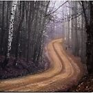 Road into the Mist by Wayne King