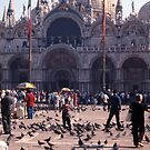 San Marco Square, Venice by Maggie Hegarty