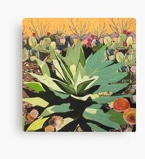 Agave in Stitches Canvas Print