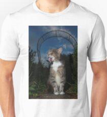 Tabby cat in garden at night T-Shirt