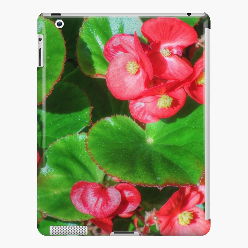 Wax Begonia iPad-Hülle & Skin