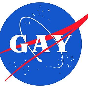 Nasa Gay Pride Logo by chalicevvinter