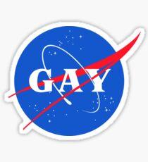 Nasa Gay Pride Logo Sticker