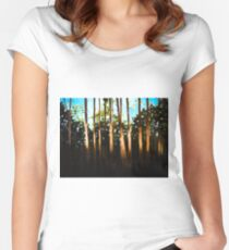 Breckenridge: A Swath of Light Women's Fitted Scoop T-Shirt