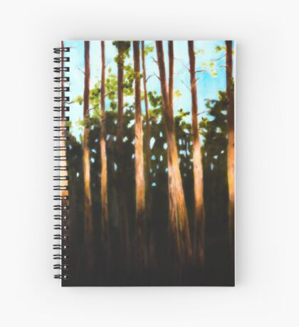 Breckenridge: A Swath of Light Spiral Notebook